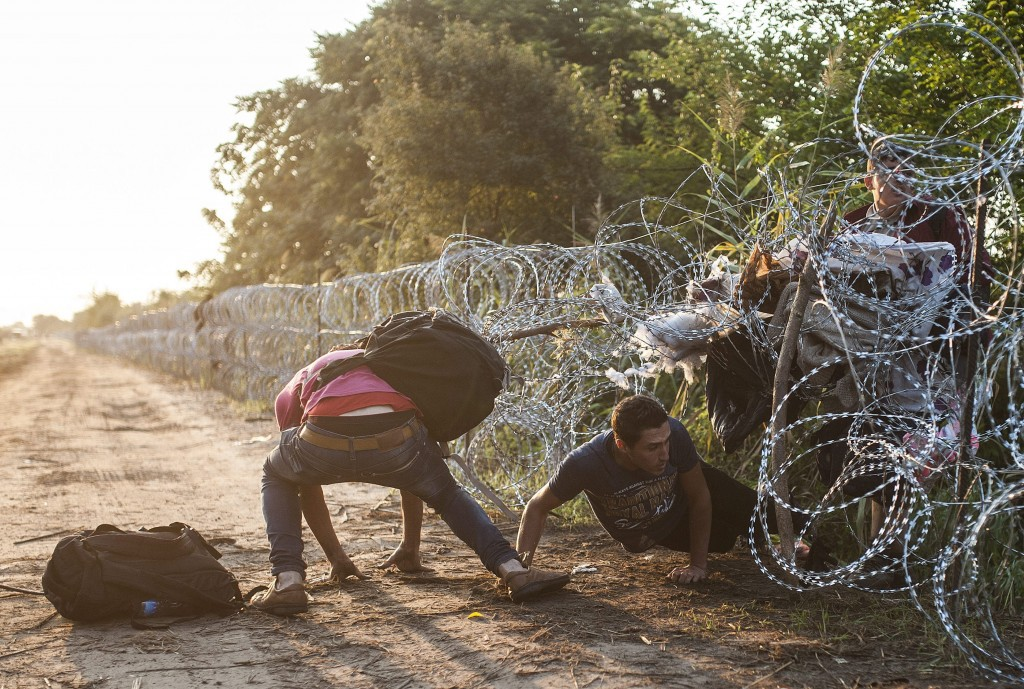 Illegális bevándorló társkereső